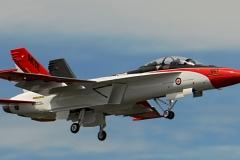 Fixed-Hornet-2
